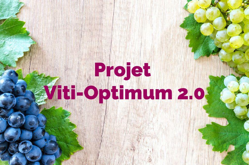 Projet Viti-Optimum 2.0 : digitalisation de la relation Conseiller-Agriculteur